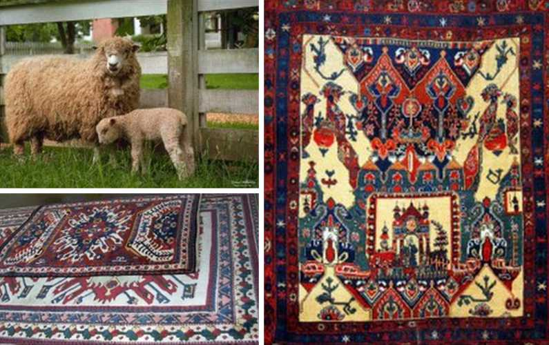 WHY WOOL IS THE BEST RUG FIBER